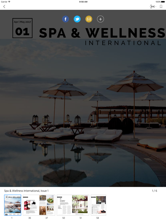 Spa & Wellness International screenshot 7