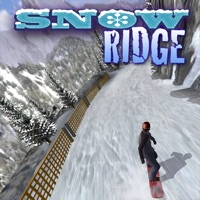 Codes for Snow Ridge Hack