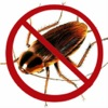 Ultrasound Cockroach Repellent