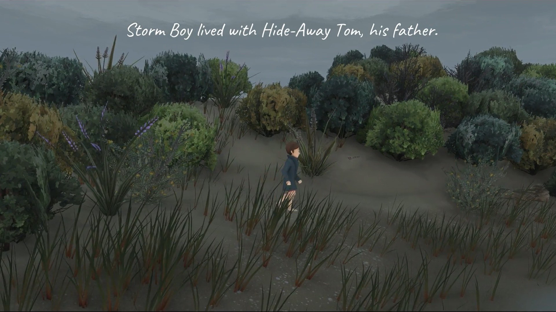 Storm Boy screenshot 14