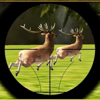 Codes for Extreme Deer Hunting Adventure Hack