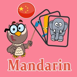 Mandarin Learning Flash Card