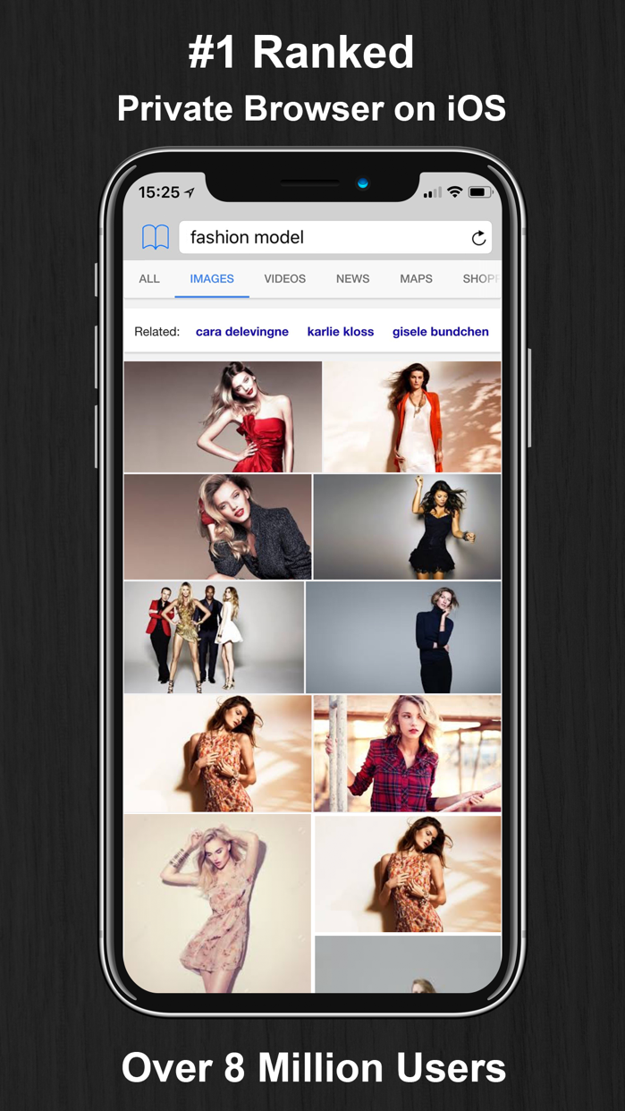 Private Browsing Web Browser Screenshot