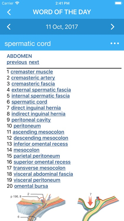 Pocket Atlas of Anatomy
