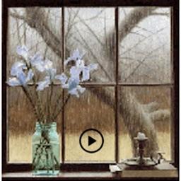 Animated Beautiful Flowers 2