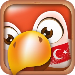 Learn Turkish Phrases & Words for Travel in Turkey