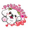 Cute Pekingese Dog Sticker