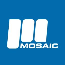 Mosaic IT