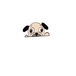 Cuddly Pug