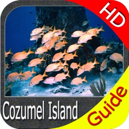 Cozumel Island HD GPS charts