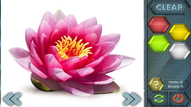 HexLogic - Flowers screenshot-3
