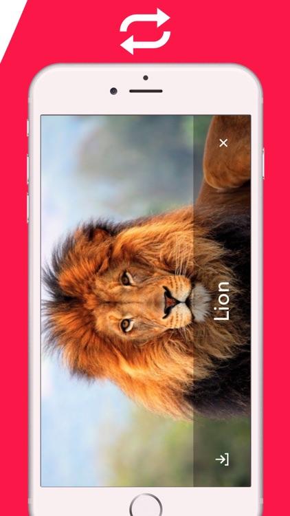 2018 Animal Sounds: Zoo, Growl screenshot-3