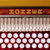 Hohner Mini-SqueezeBox Reviews