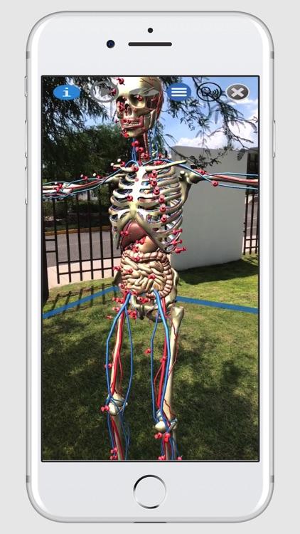 ARnatomy screenshot-3