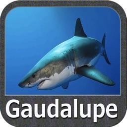 Gaudalupe - GPS Map Navigator