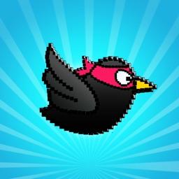 Simple Birds: Fun and Cool Run