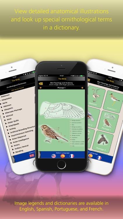 The Birds of Ecuador screenshot-3