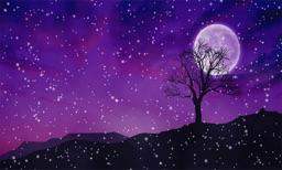Snowy Winters