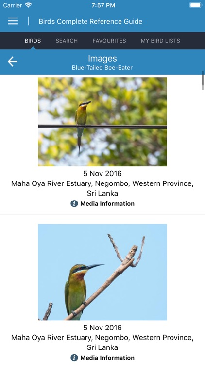 Birds Complete Reference Guide screenshot-4