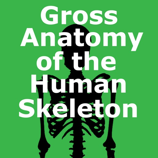 Gross Anatomy of the Skeleton