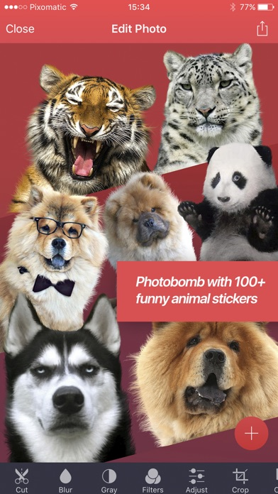 Pixomatic photo editor app image