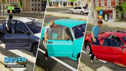 Driver Simulator screenshot 1