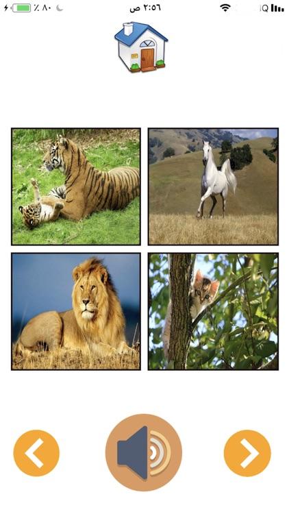 Animal Sounds Z