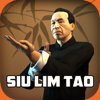 Sakari Games - Ip Man Wing Chun Kung Fu : SLT アートワーク