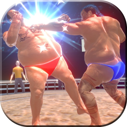 Real Sumo Fighting 2017