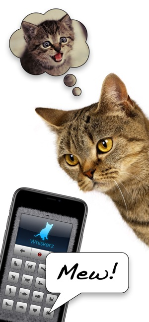 Human-to-Cat Translator on the App Store