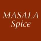 Masala Spice icon