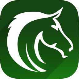 Horse Racing Free Quick Picks