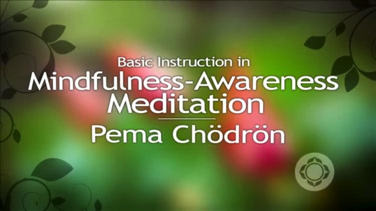 Pure Meditation - Pema Chödrön screenshot-4