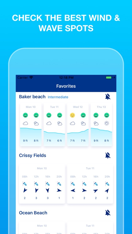 Weesurf, wave & wind forecast screenshot-0
