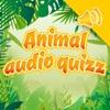 动物和声音测验