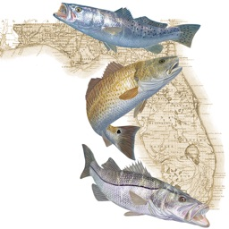 Florida Fishing Regulations