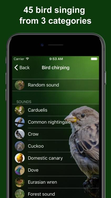 Bird Alarm Clock & Sleep Sound