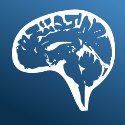 Nina Neuroimaging in Neurology