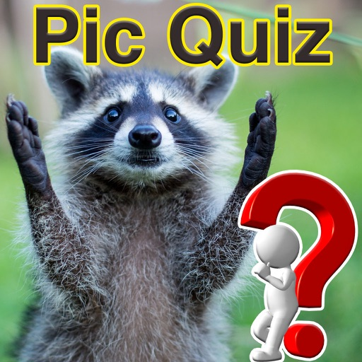Pic Quiz 2018 icon