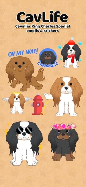 Cavlife 4 Cavalier Dog Emojis
