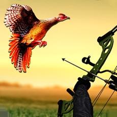 Activities of Pheasant Bow Hunting Safari