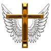 Sur les ailes de la foi Pro