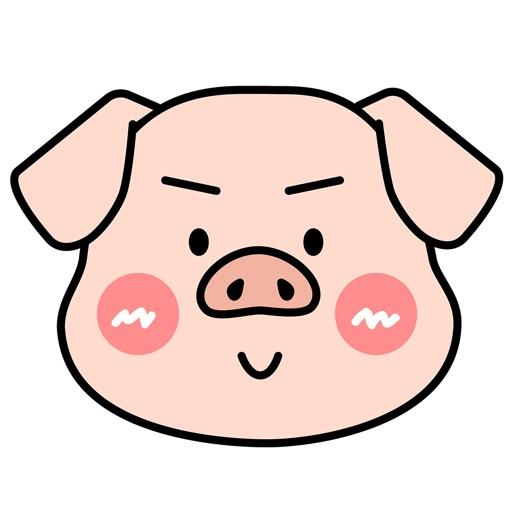 创业奋斗猪老板