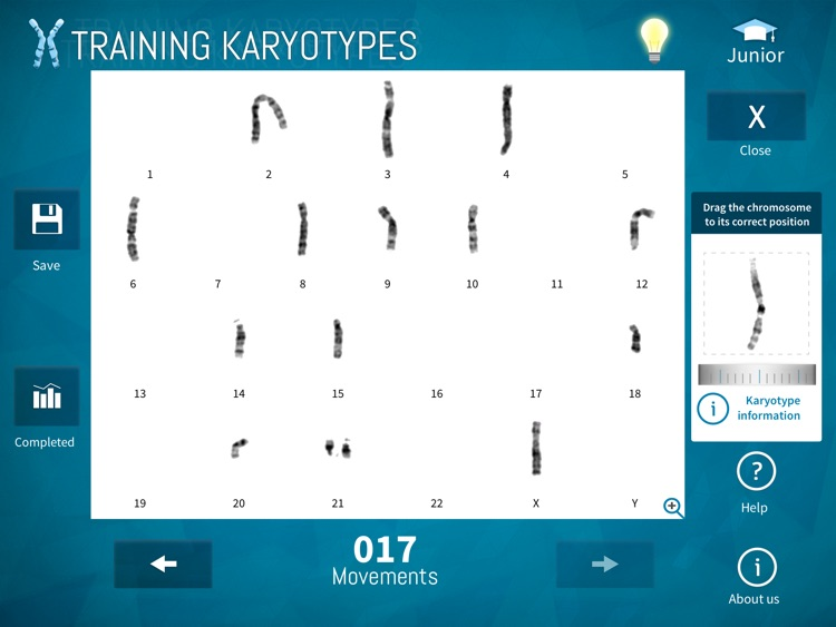 Training Karyotypes