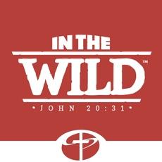 Activities of LifeWay VBS In the Wild