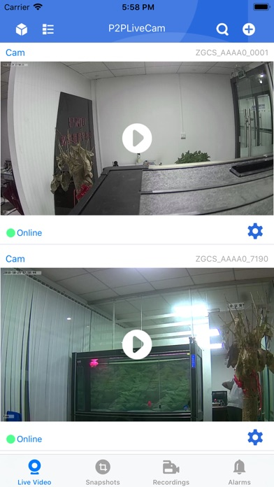 P2PLiveCam Screenshot on iOS