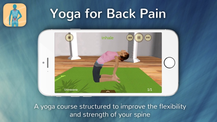 Yoga for Back Pain Relief screenshot-0
