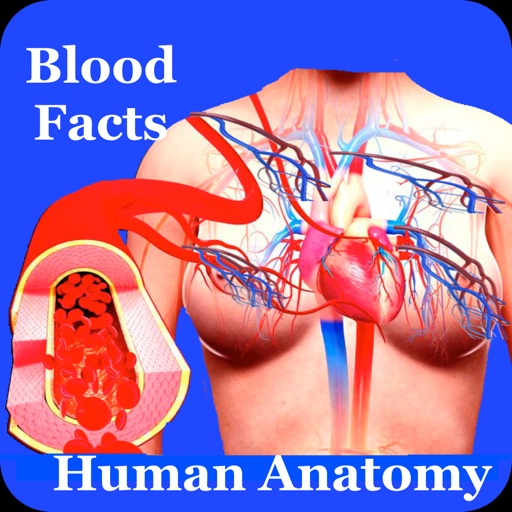 Human Anatomy Blood Facts 2000