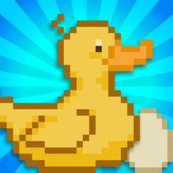 Duck Farm!