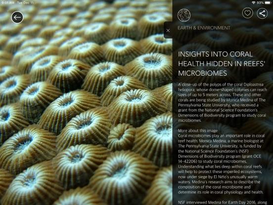 NSF Science Zone Screenshot 1